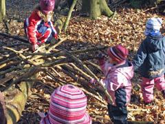 Gruppenübergreifender Waldtag