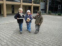 """Projekt """"Fossilien und Dinosaurier"""""""