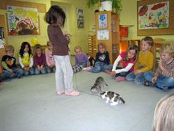 Projekt Tierbabys